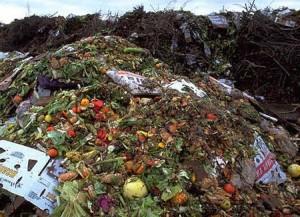 alimentazione-sostenibile-frigo-sprechi-alimentari