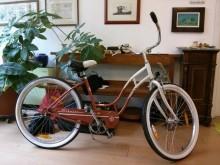 bici japppo Simo